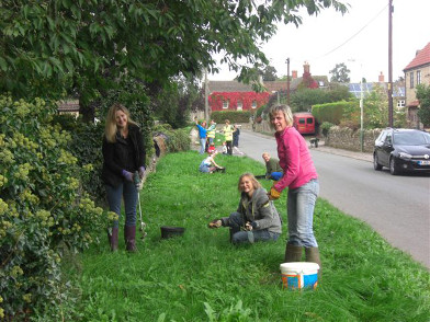 Bulb planting-Village link & dogs 2013 005_small